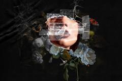ROH-Rigoletto-Artwork-c2021-ROH.-Artwork-by-Dan-Muzzi